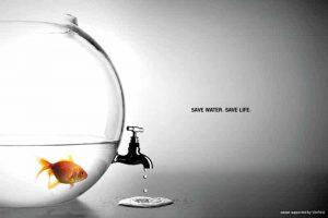 Fishbowl Ad